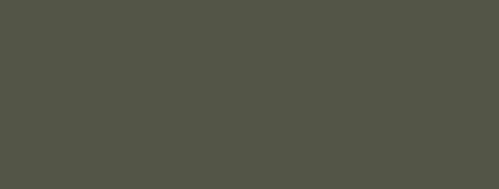 A-24M Camouflage Green